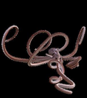Octopus, Squid, Animal, Underwater