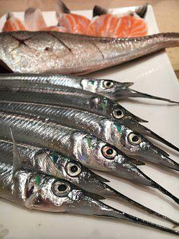Seafood, Fish, Garfish, Piper, Platter