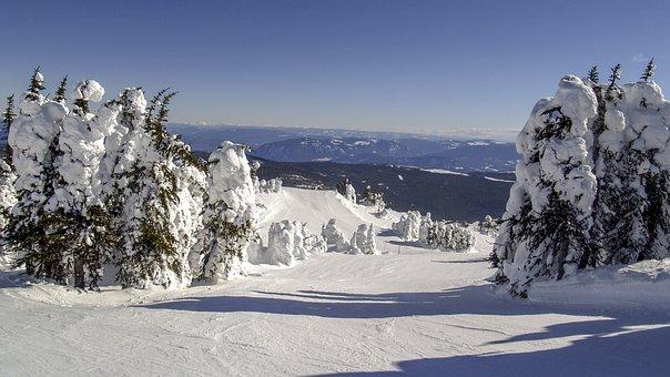 Winter, Snow, Season, Nature, Landscape, Ski Resort