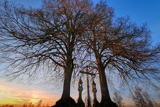 Cross, Memorial, Tree, Cemetery, Stone, Tombstone