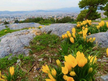 Athens In Spring, Athens, Filopappou