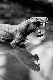 Dinosaur, Prehistoric Times, Animal, Reptile