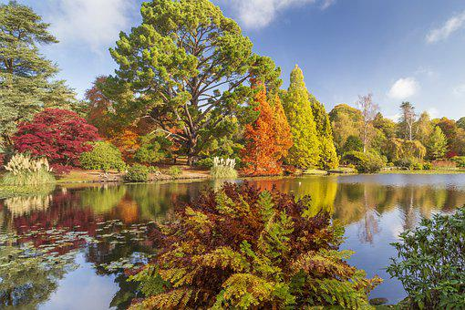 Autumn Colour, Sheffield Park, Sussex