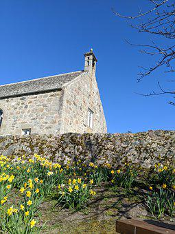 Church, Blue Skies, Sky, Religion, Daffodils