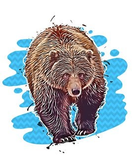 Bear, Grizzly, Nature, Animal, Mammal, Wildlife