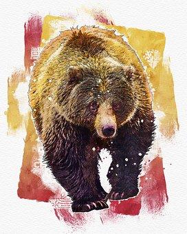 Bear, Grizzly, Nature, Animal, Mammal, Wildlife