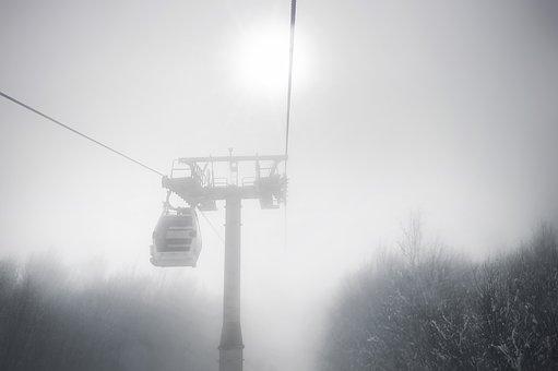Fog, Winter, Snow, Mist, Forest, Tree
