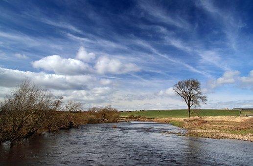 Landscape, River, Tree, River Wear