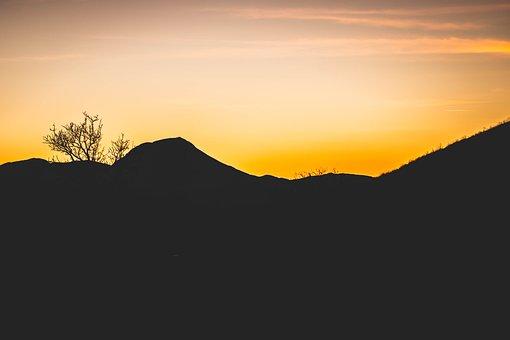 Sunset, Yellow, Sun, Sky, Landscape, Nature, Tree