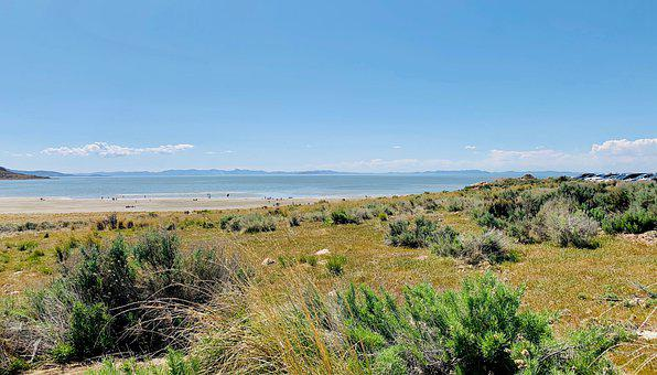 Utah, Antelope Island, Lake, Salt Lake, Great Salt Lake
