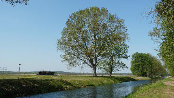 Nuthe, Trebbin, Deciduous Tree, Channel, Hut, Meadow