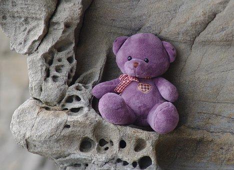 Teddy Bear, Birthday, Expectation, Love, Gift