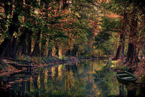 Spreewald, Channel, Water, Landscape, Trees, Nature