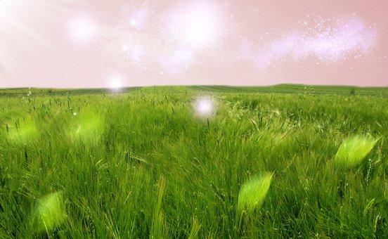 Landscape, Dreams, Mystical, Magic, Mood, Romantic
