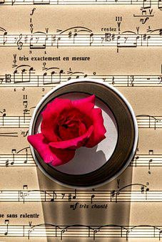 Music Note, Rose, Notes, Musical, Pink, Scrapbook