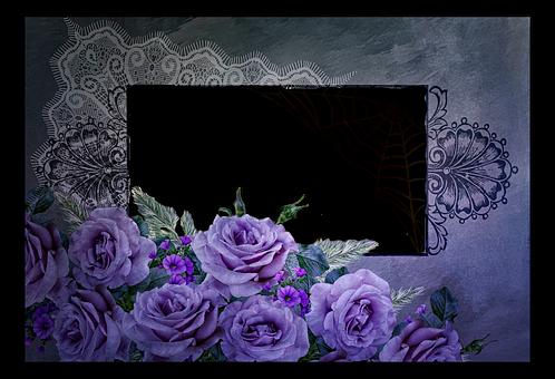 Roses, Flowers, Purple, Violet, Great