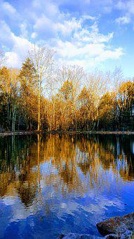Reflection, Trees, Lake, Sky, Clouds, Water, Forest