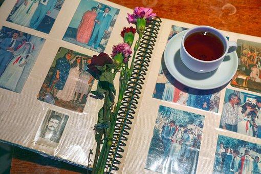 Tee, Album, Alpine, Spring, Flower, Reddish, Pink