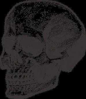 Skull, Pirate, Deadly, Death, Danger
