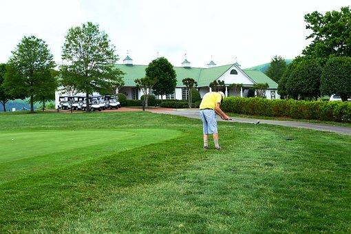 Golfer, Putting, Golf, Sport, Greens, Golf Club, Putt