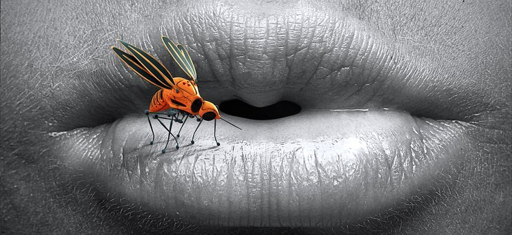 Mouth, Insect, Surreal, Mosquito, Lips, Sting, Animal