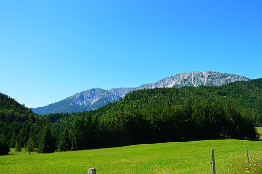 Snow Mountain, Lower Austria, Meadow