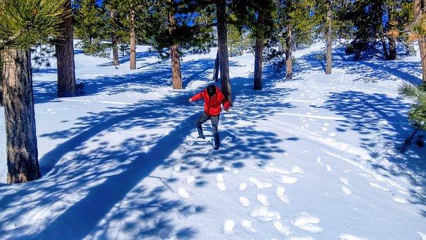 Snow, Mountain, Daylight, Solitude, Alone, Wilderness
