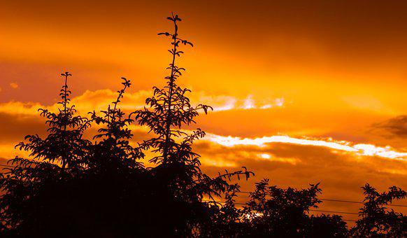 Landscape, Nature, View, Red, Orange, Yellow, Sky