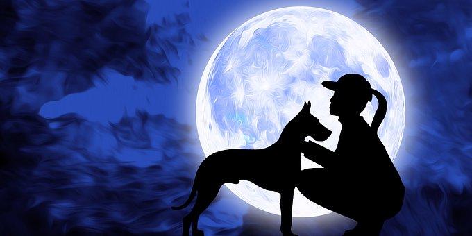 Dog, Pet, Girl, Love, Moon, Night, Sky, Full Moon