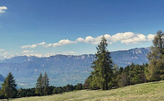 Mountain Meadow, South Tyrol, Dolomites