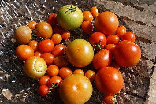 Tomatoes, Vegetables, Garden, Rosemary
