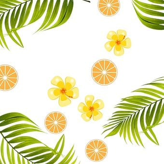 Background, Tropical, Hibiscus, Natural, Hojas, Dorado