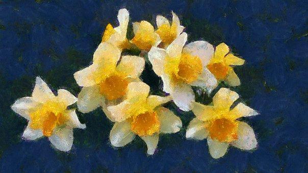 Oil Painting, Flowers, Narcissus, Plants, Petal