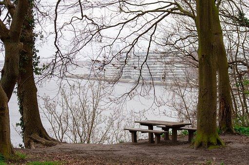 Århus, Aarhus, View, Forest, Bench