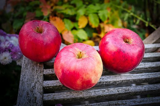 Harvest, Apple, Red, Fruit, Fresh