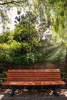 Bank, Wood, Sit, Bench, Park Bench