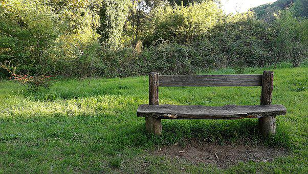 Nature, Bench, Solitude, Pause, Rest, Wood, Isolation