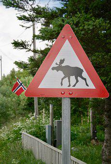 Moose, Shield, Red, Norway, Traffic Sign, Flag, Warning