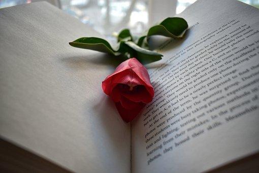 Tulips, Flowers, Spring, Art, Bouquet, Book, Read