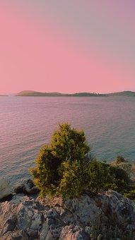 Tree, Plants, Sea, Mountain, Sky, Pink Sky, Waves
