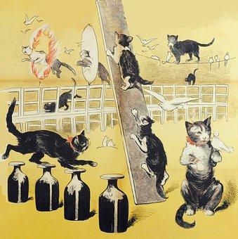 Cats, Kitties, Kittens, Cute, Felines, Animals, Vintage