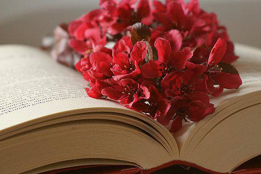 Book, Bookmark With Flowers, Open Book, Manual