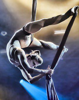 Circus, Performance, Woman, Women, Entertainment, Show