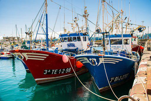Boat, Fishing, Fishing Boat, Harbor, Commercial, Ship