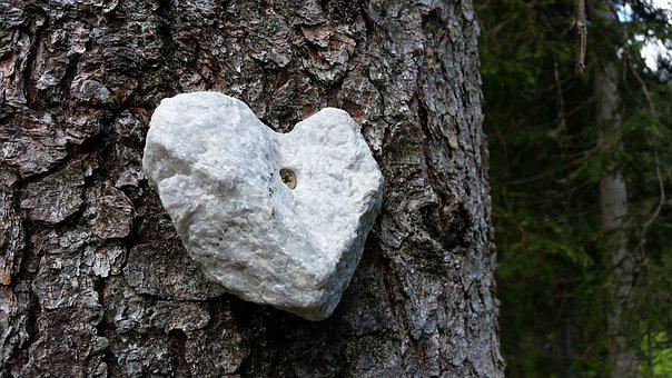 Stone, Heart, Wood, Tree, Heartshaped, Rock, Romance