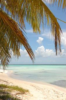 Beach, Seaside, Seashore, Shore, Foreshore