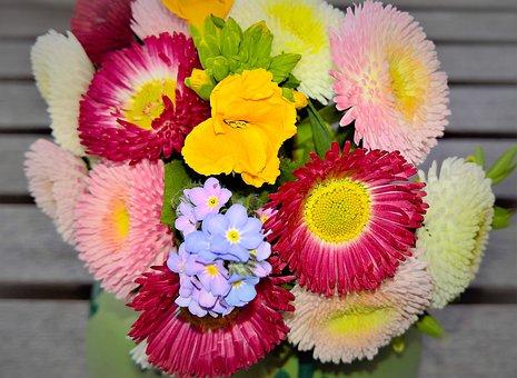 Flowers, Mini Bouquet Of Flowers