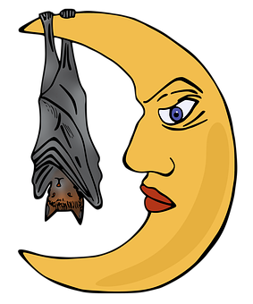 Month, Bat, Night, Sleep, Halloween, Scary, Bats, Dark