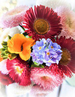 Spring Flowers, Small Bouquet, Colorful, Bellis, Daisy