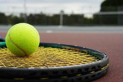 Tennis Racket, Tennis Ball, Racket, Tennis, Ball, Sport